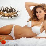 Đông trùng hạ thảo thần dược dành cho phụ nữ trước và sau khi sinh