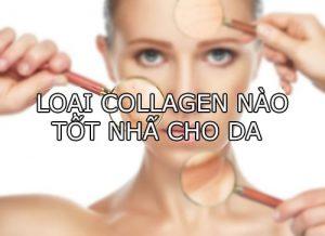 Loại collagen nào tốt nhất cho da-1