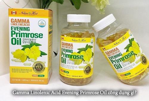 Gamma Linolenic Acid Evening Primrose Oil công dụng gì?-1